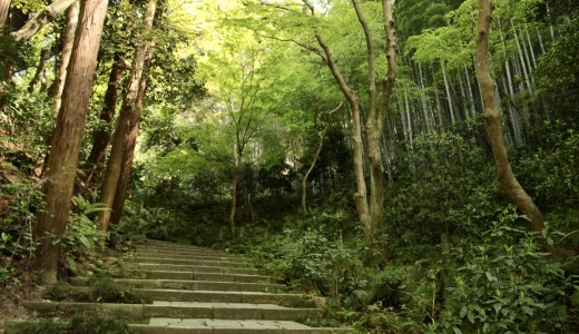 【鎌倉】瑞泉寺へ行ってきた【神奈川の寺院】