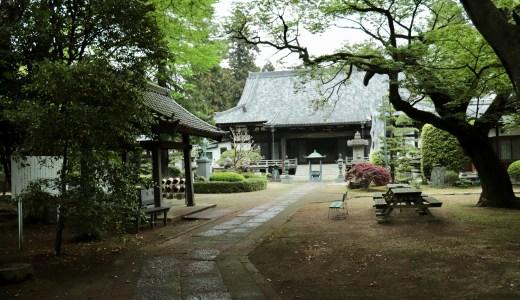 【守谷】まるで小京都?!自然の景観美が魅力の駅前にあるお寺 長龍寺へ行ってきた【茨城の寺院】