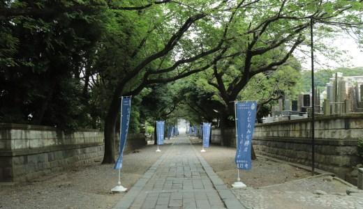 【藤沢】時宗総本山 遊行寺へ行ってきた【神奈川の寺院】
