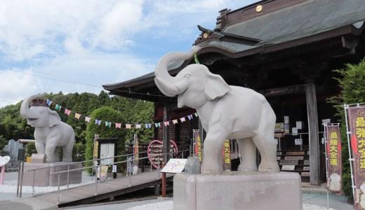 国内屈指の金運のパワースポット!象から金運を授かる長福寿寺へ行ってきた【千葉の寺院】