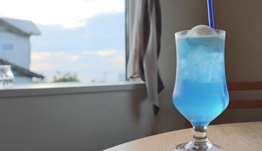 【富津】海が見える丘の上のオシャレなお店!海猫珈琲店でクリームソーダとか満喫してきた【千葉のグルメ】