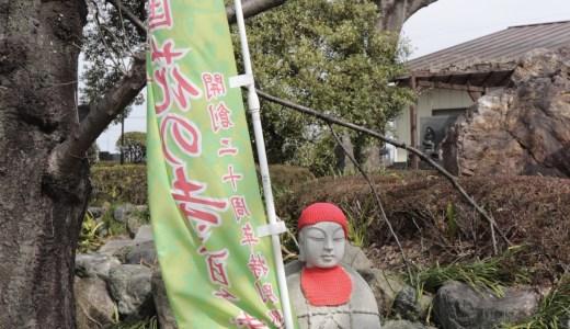 【太田】季節の花々が美しい常楽寺へ行ってきた【群馬の寺院】