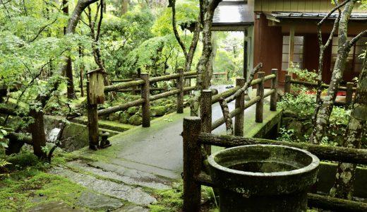 【桜川】境内の自然に心が癒される神社!五所駒瀧神社へ行ってきた【茨城の神社】