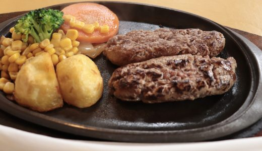 【桜川】塩で食べるハンバーグが大人気!ペンギンへ行ってきた【茨城のグルメ】