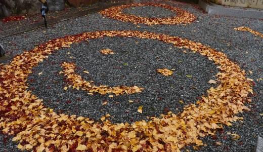【亀岡】紅葉シーズンの丹波國一之宮 出雲大神宮へ行ってきた【京都の神社】