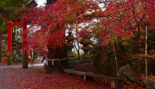 【亀岡】紅葉シーズンの鍬山神社へ行ってきた【京都の神社】