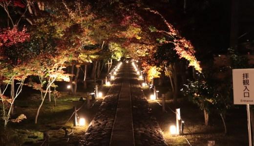 【嵯峨野嵐山/紅葉シーズン】鹿王院の夜間特別拝観へ行ってきた【京都の寺院】