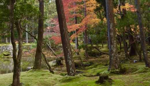 【嵯峨野嵐山/紅葉シーズン】一生に一度は訪れるべし!苔庭が美しい西芳寺へ行ってきた【京都の寺院】