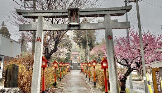 【宇都宮】平出雷電神社へ行ってきた【栃木の神社】