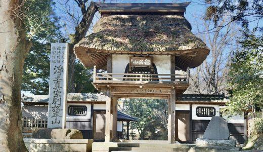 【笠間】美しい境内に癒される!西念寺(稲田御坊)へ行ってきた【茨城の寺院】