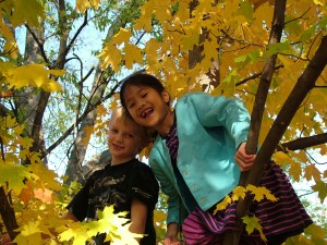 653653_24804970 girls in tree