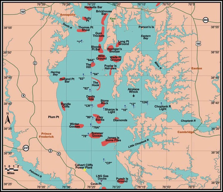 Chesapeake Bay Fishing Map