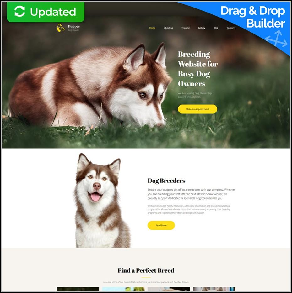 Dog Breeder Website Template
