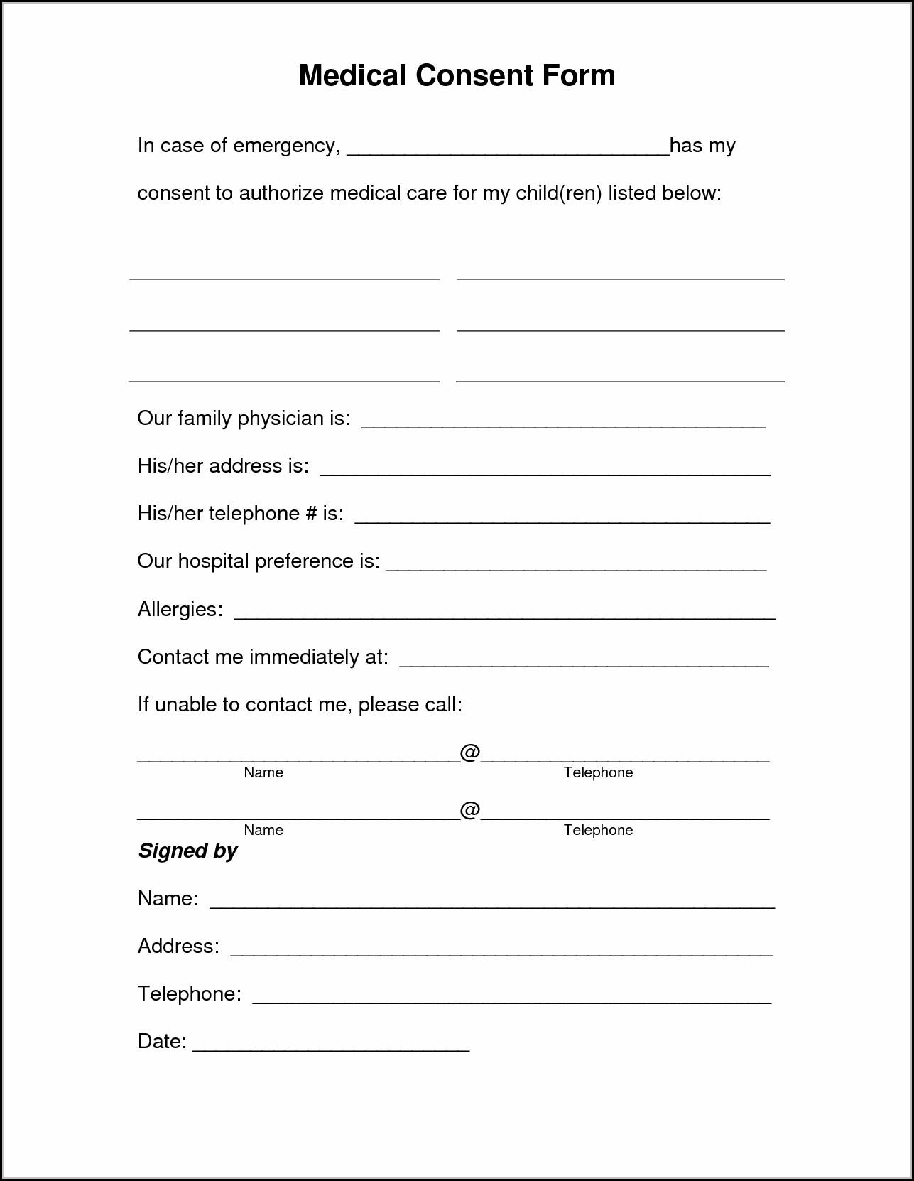Medical Authorization Form For Grandparents Florida