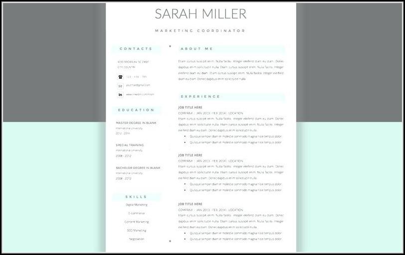 Minimalist Resume Template Word Free
