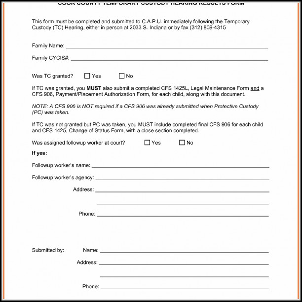Temporary Child Custody Form
