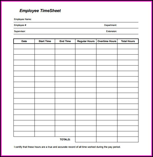 Daily Employee Timesheet Template