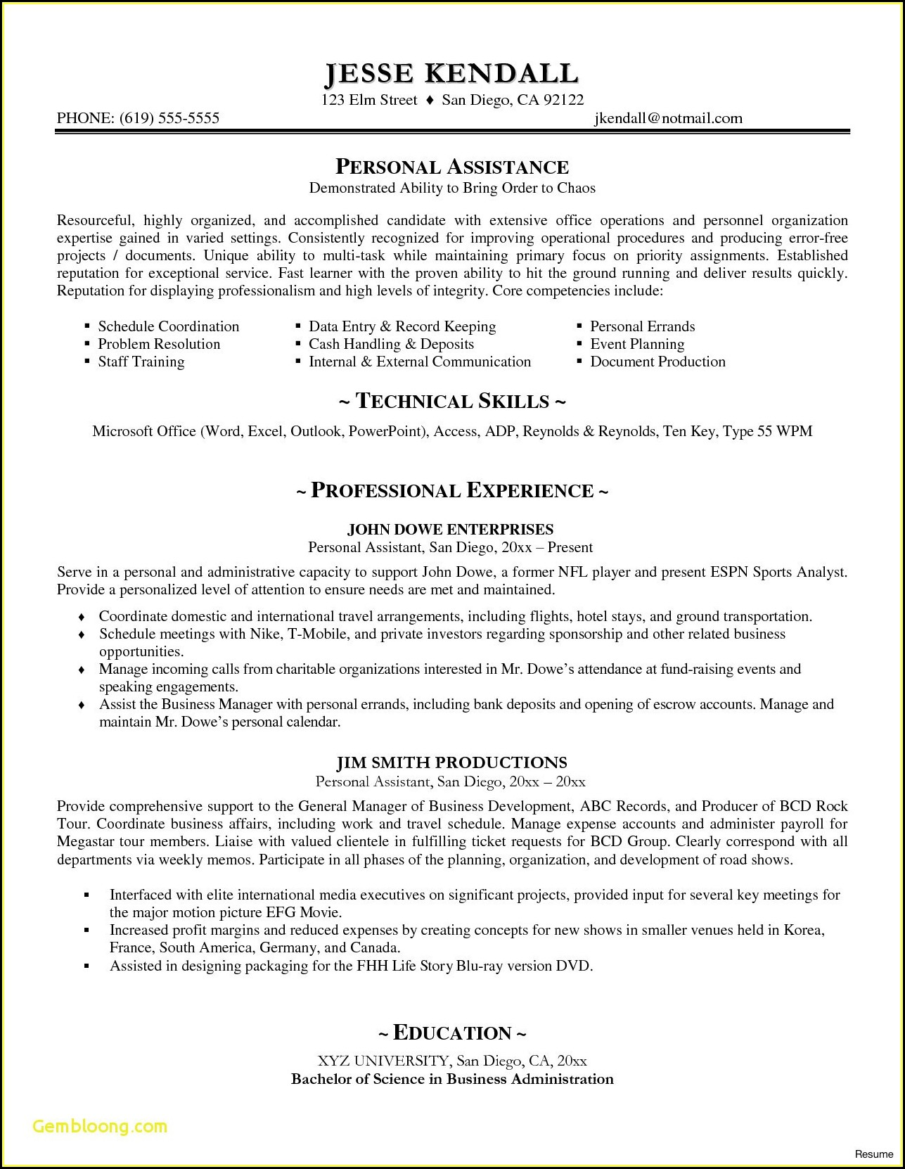Executive Resume Examples Word