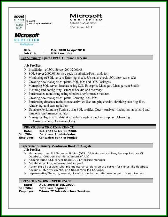 Mis Executive Resume Format Download
