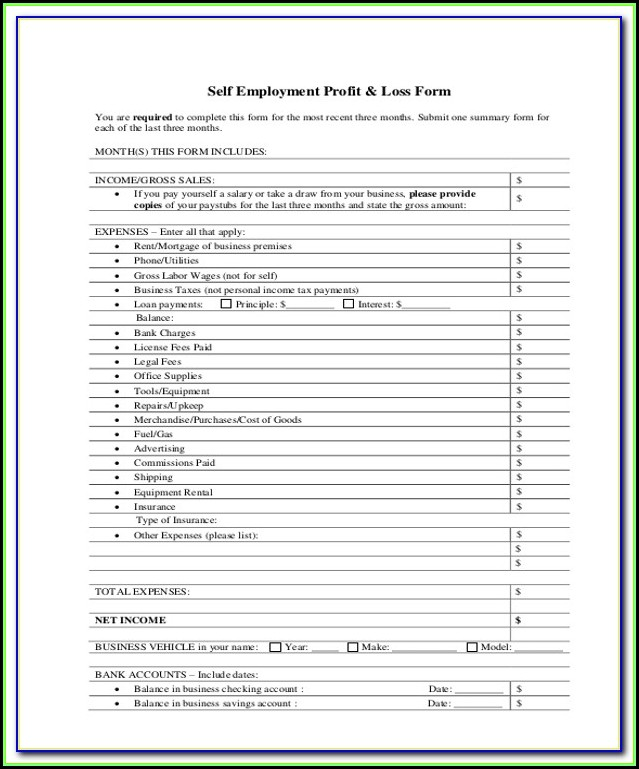 Profit Loss Statement Form For Self Employed