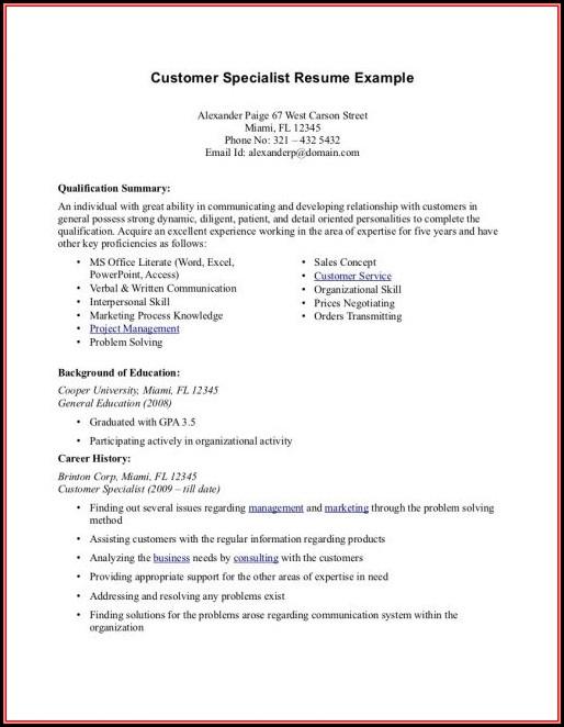 Resume Summary Example For Customer Service