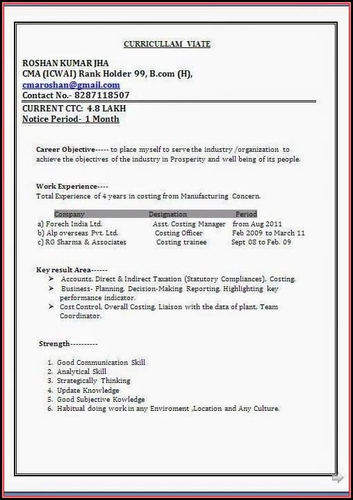 Standard Resume Format Doc Download