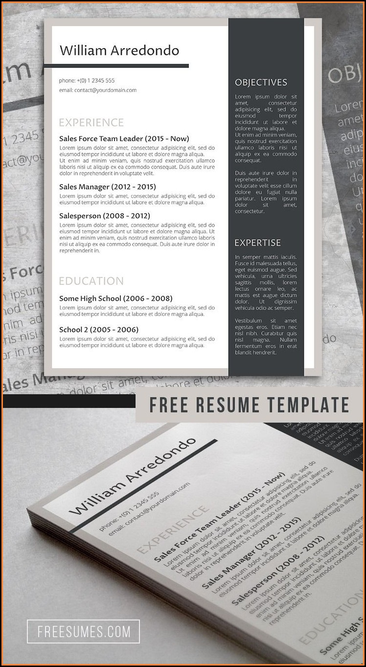Free Stylish Resume Templates Docx