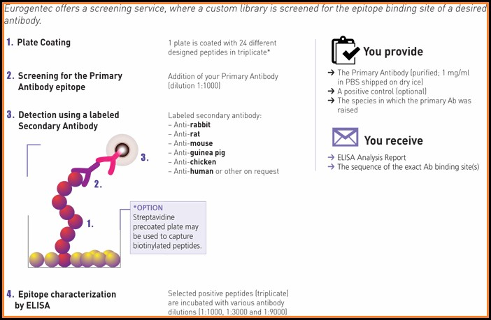 Epitope Mapping Service
