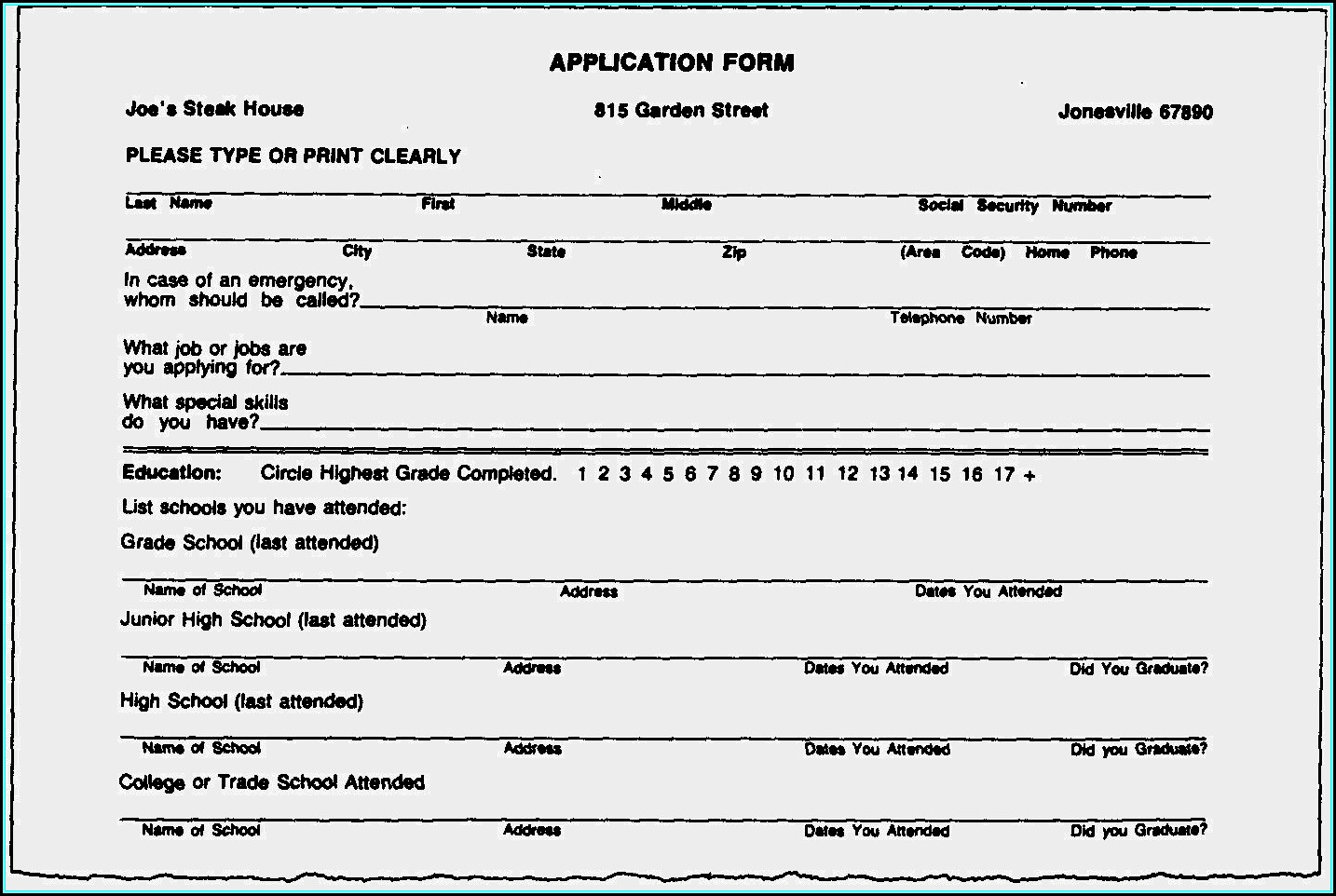 Resume Blank Forms To Fill Out