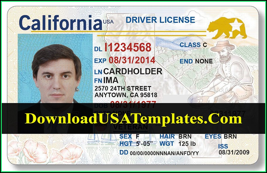 Drivers License Template Software