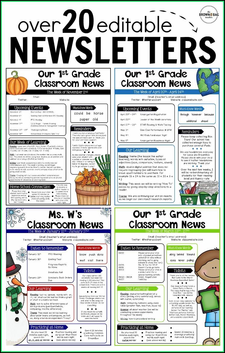 Editable Newsletter Template School