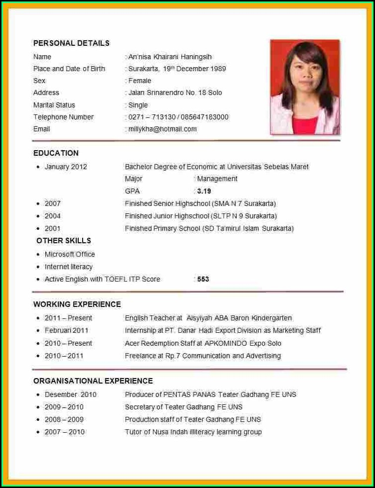 Example For Curriculum Vitae