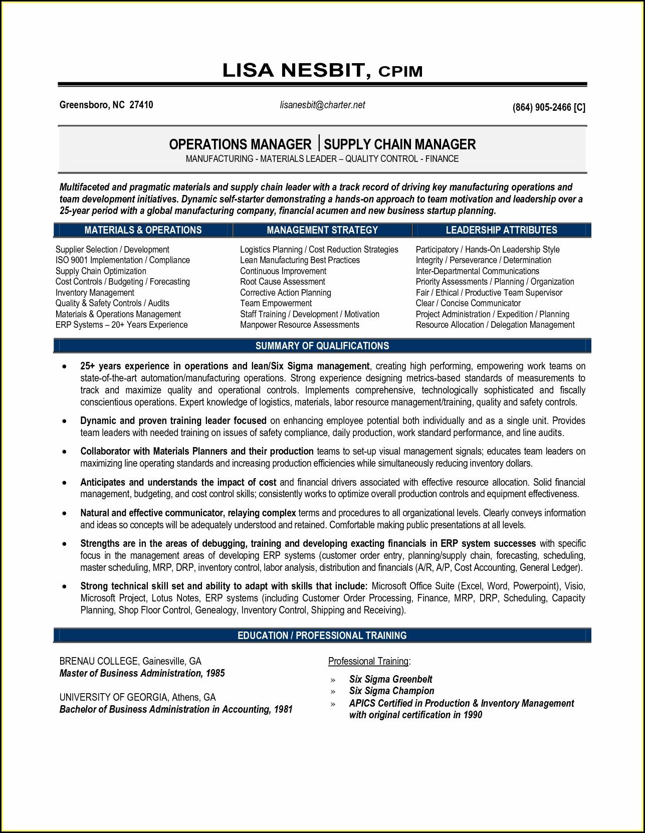 Distribution Executive Resume