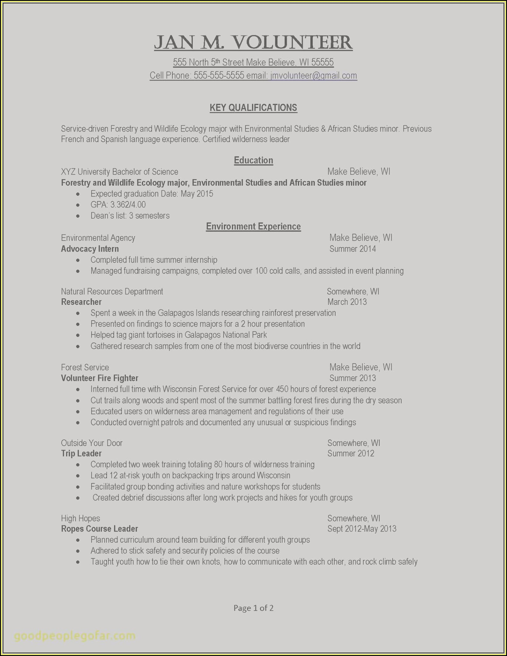 Executive Cv Template Download