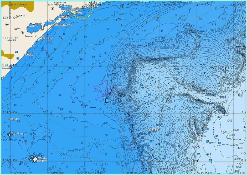C Map Jeppesen Marine