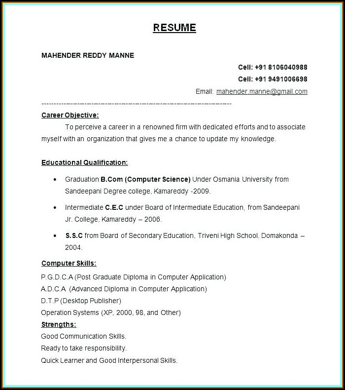 Free Download Resume Format In Word 2007