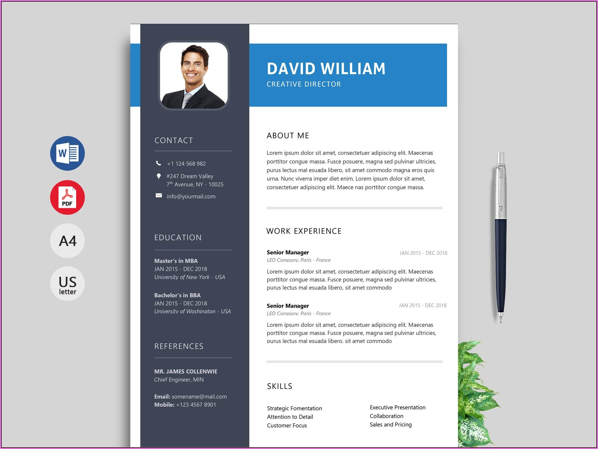 Impressive Resume Templates Free Download