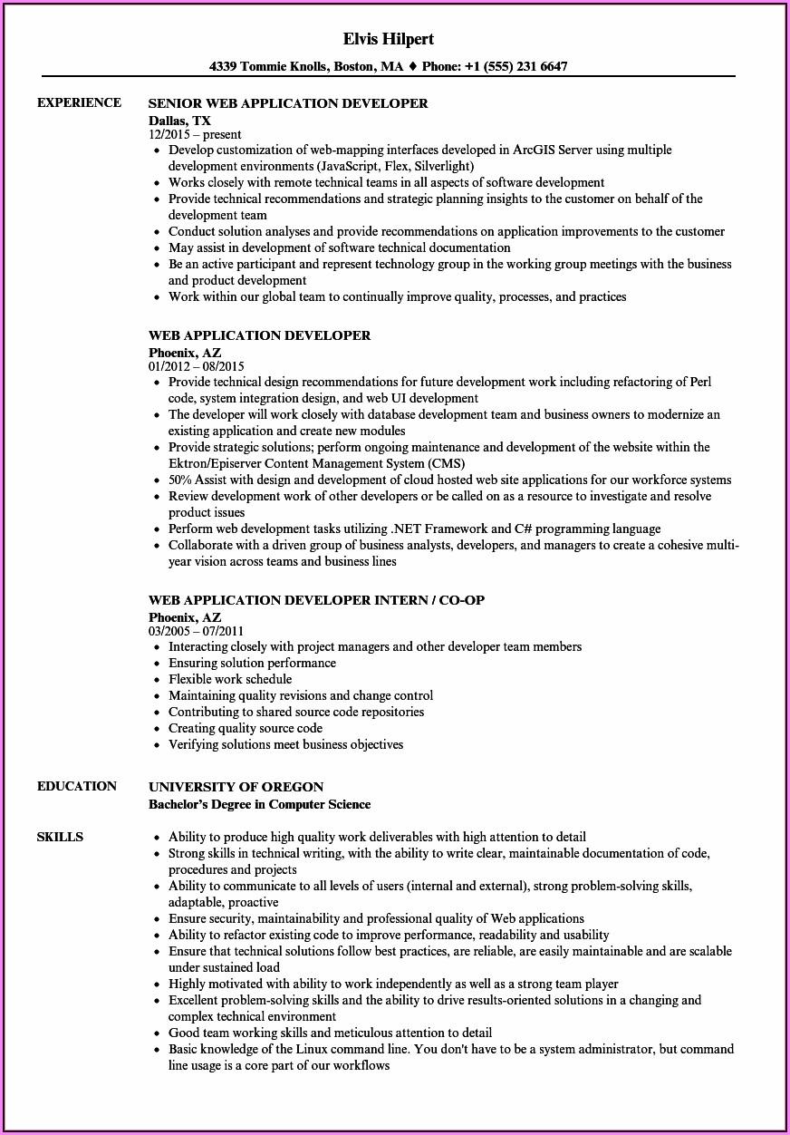 Magento Certified Developer Resume