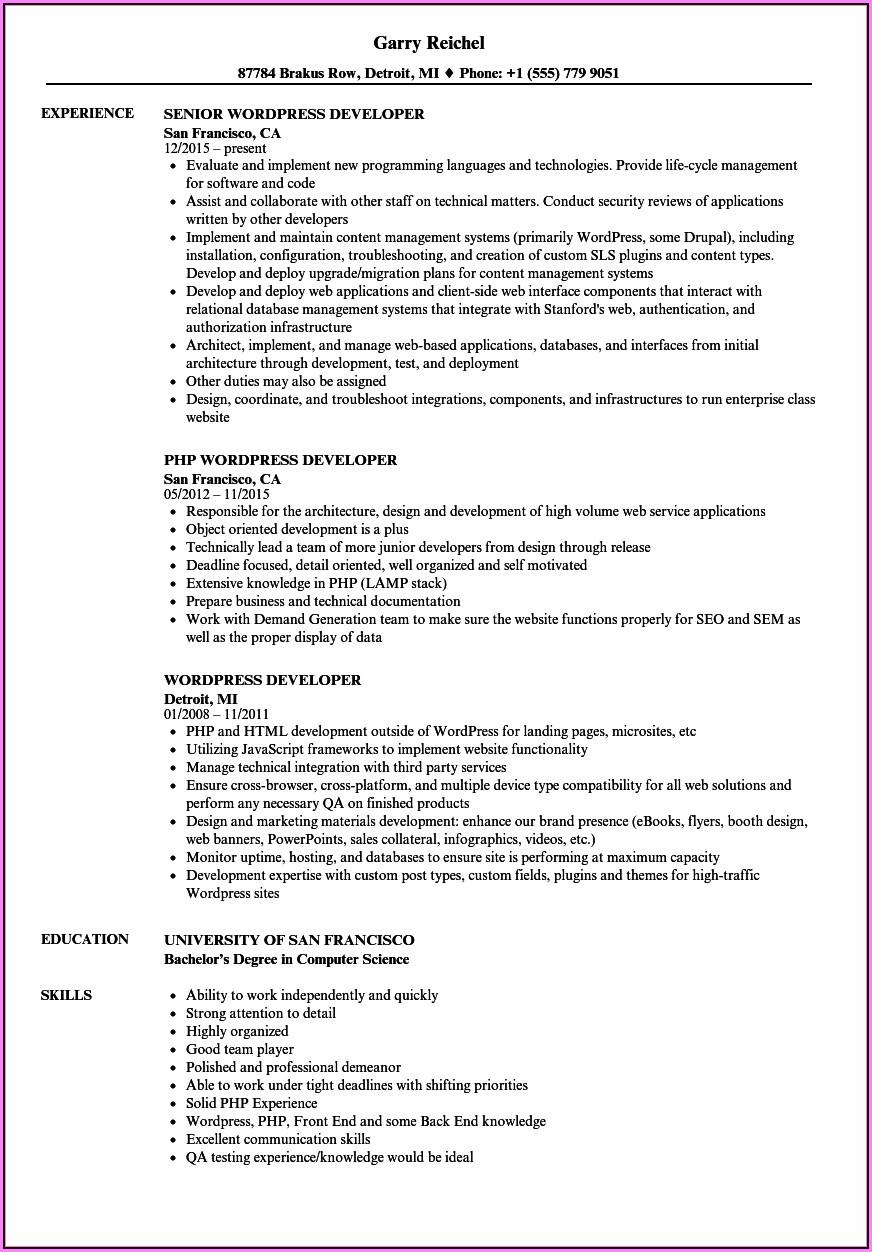Magento Developer Resume Summary