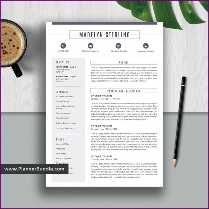 Resume Template For College Students Free Download