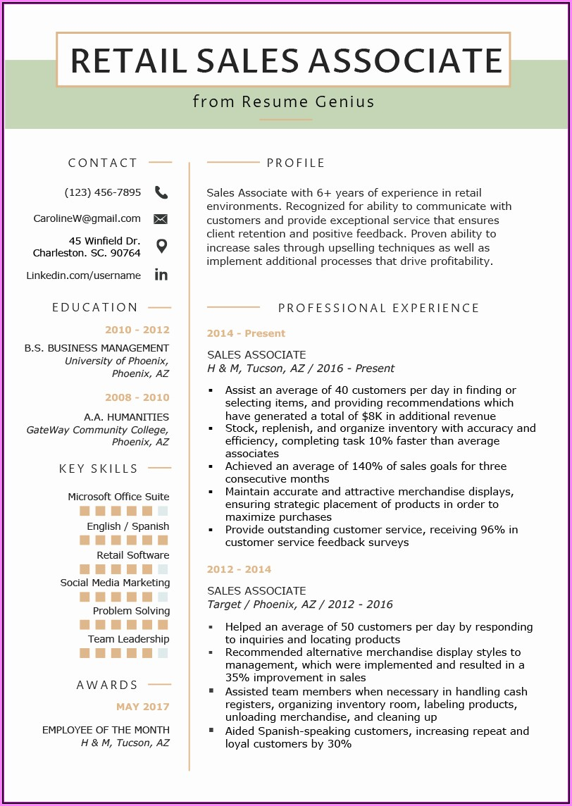 Resume Templates For Sales