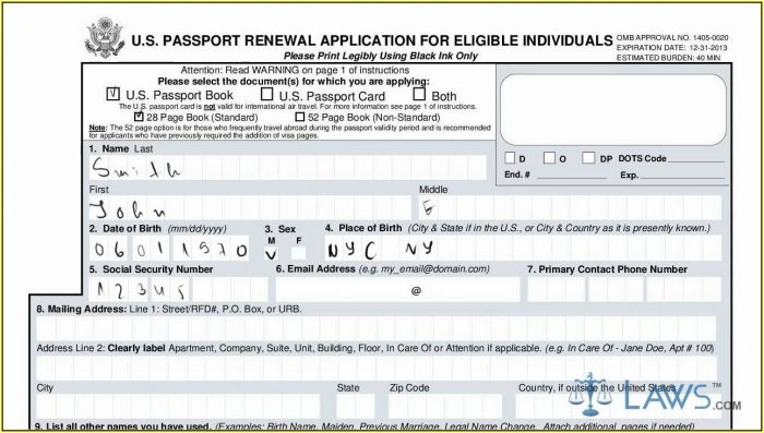 United States Passport Renewal Form Ds 11