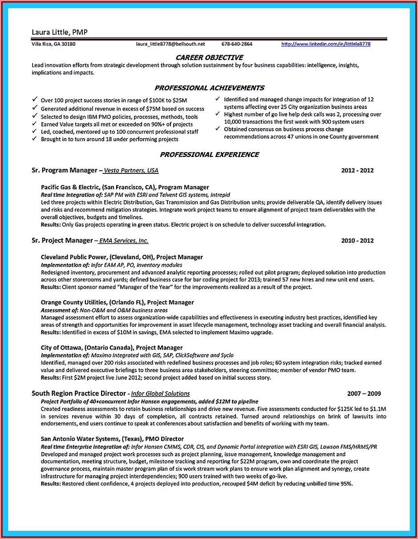 Business Intelligence Developer Sample Resume