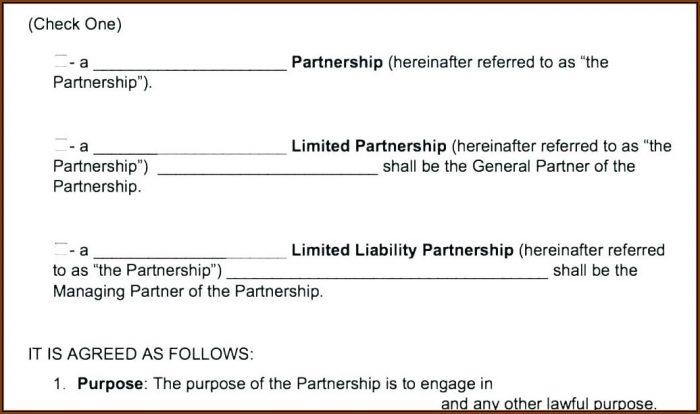 Business Partnership Agreement Template Uk Free