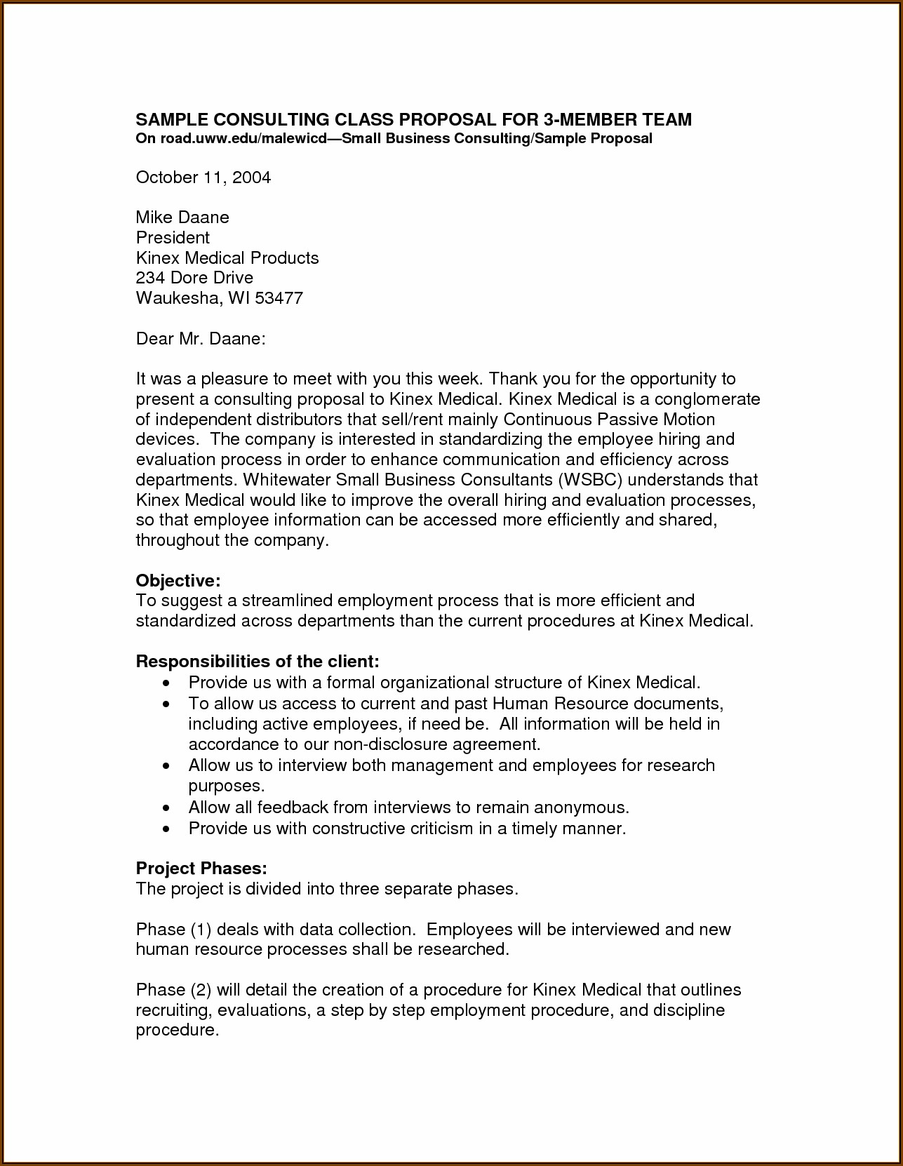 Business Proposal Template Document