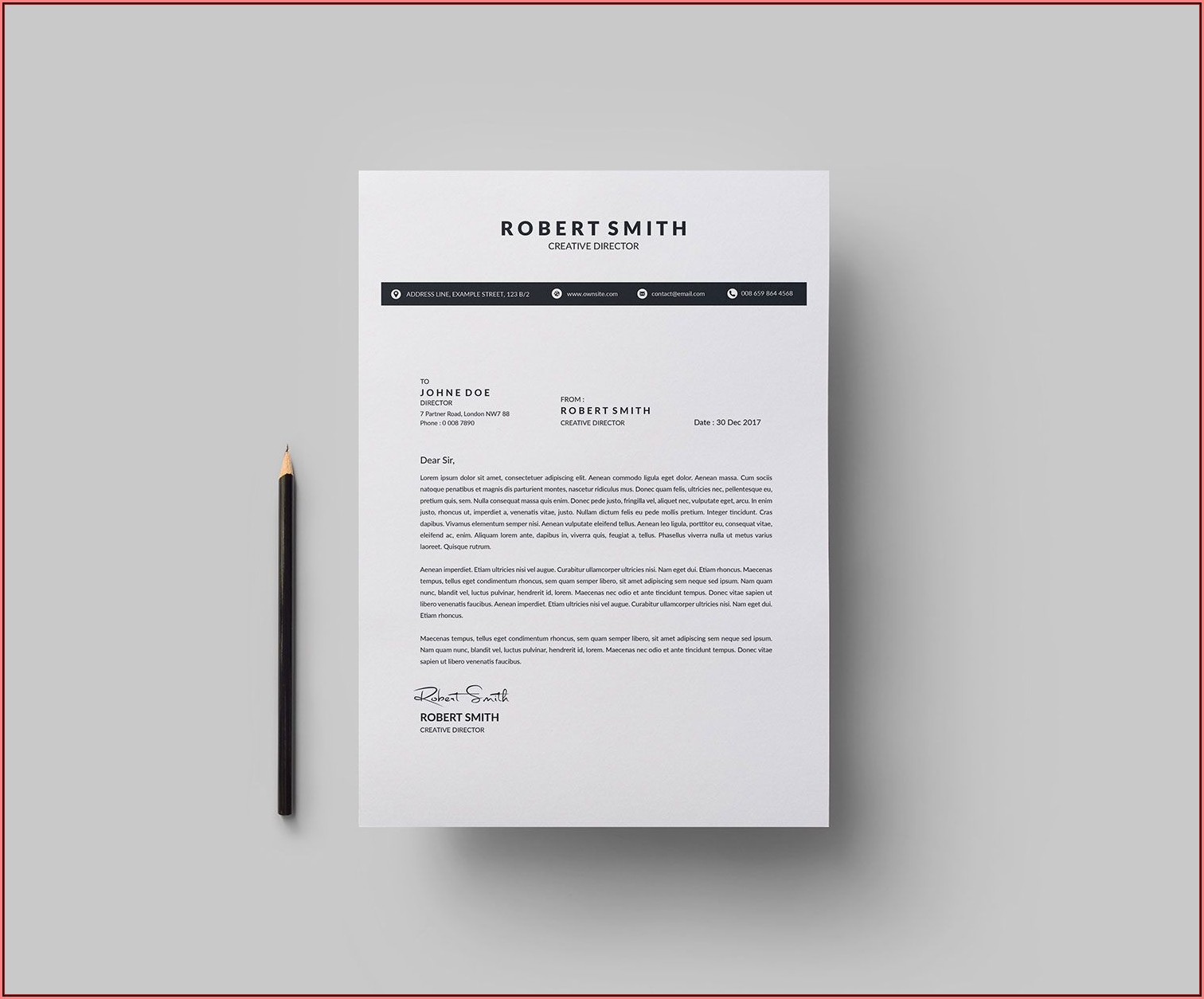 Classy Resume Templates