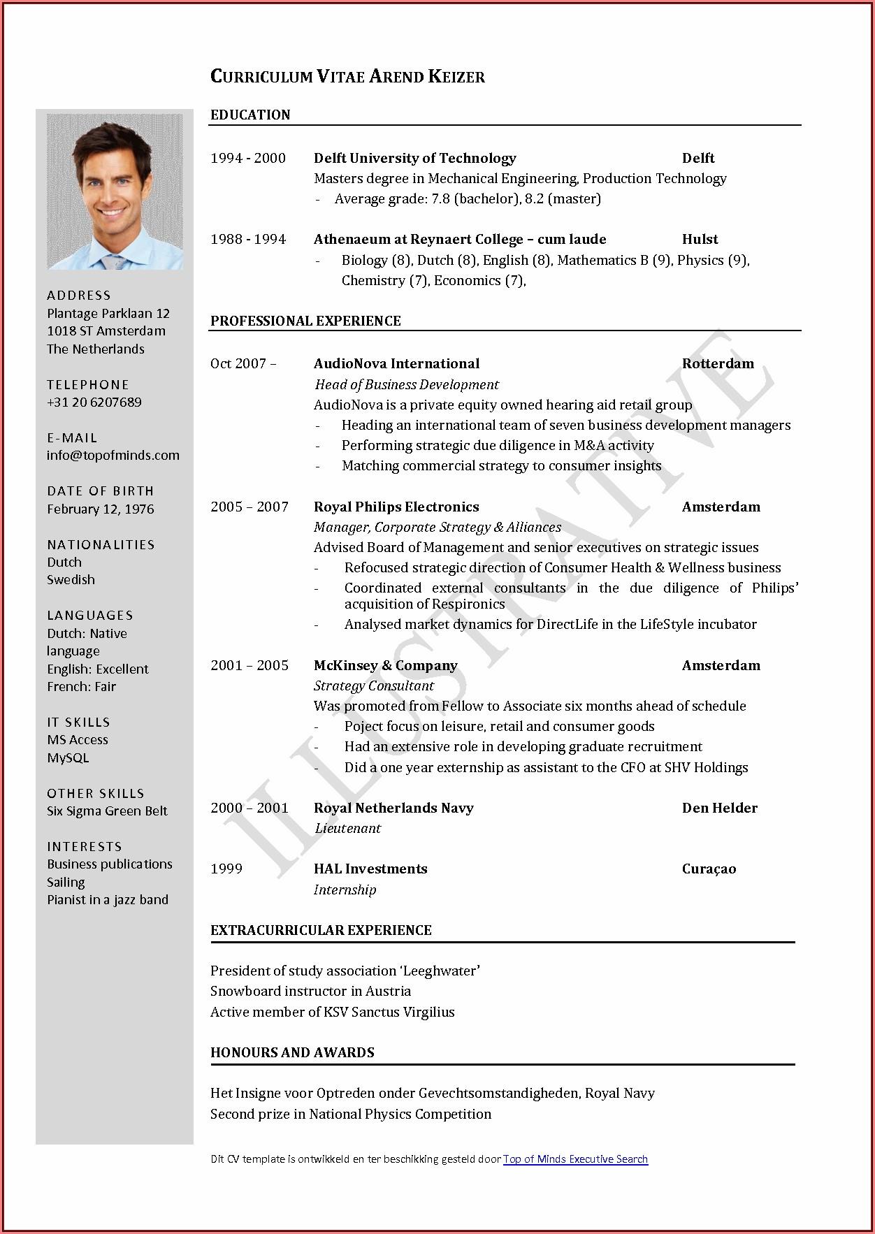 Curriculum Vitae Cv Template Free Download