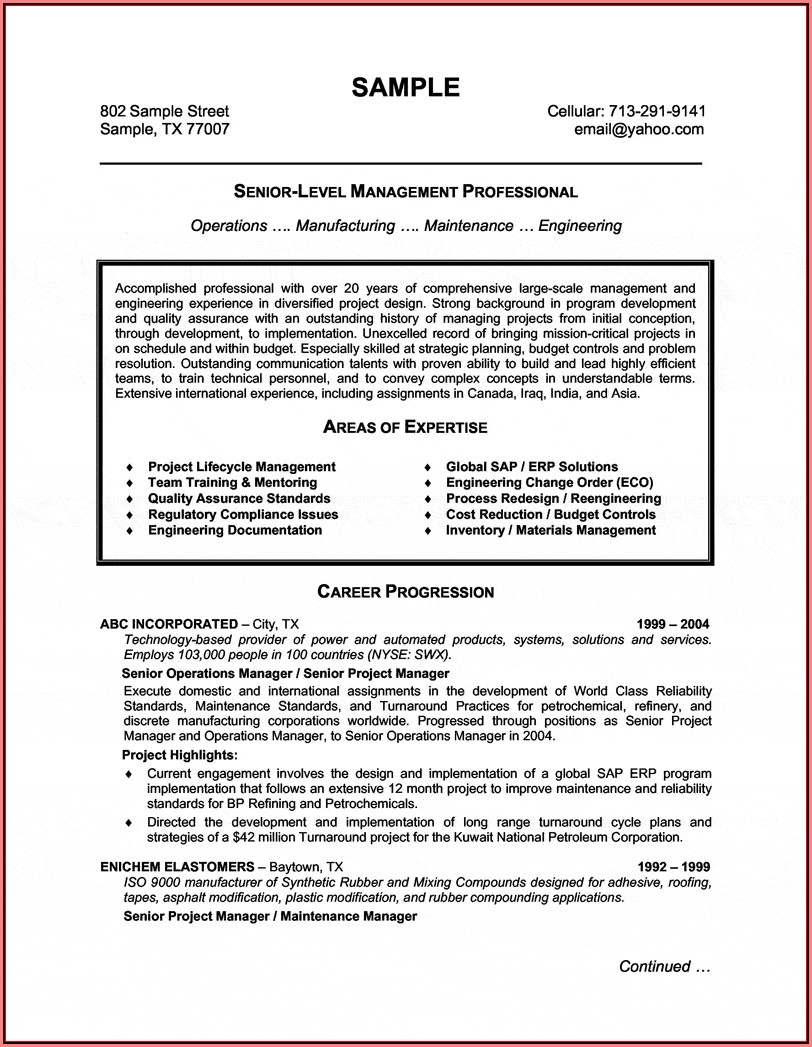 executive-sales-professional-resume-template Telecom Resume Format Download on