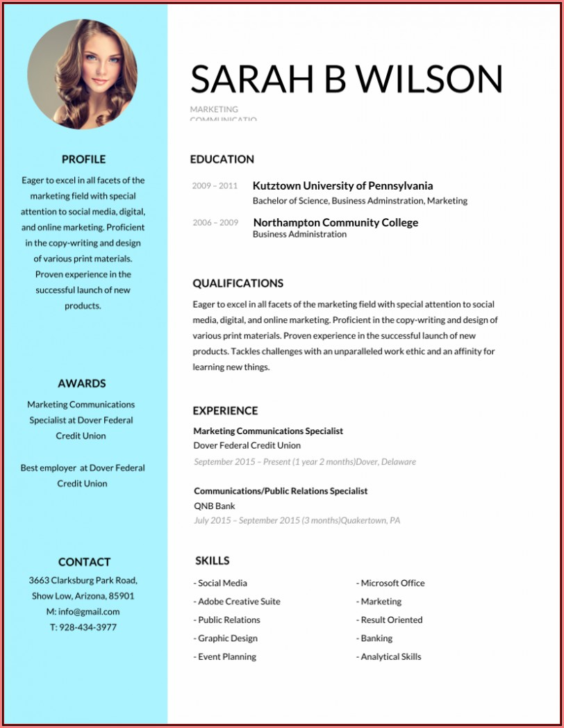 Free Editable Professional Resume Templates