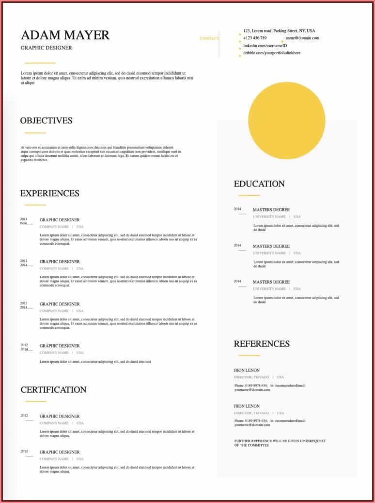 Free Good Resume Examples